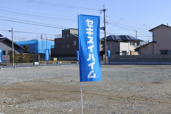 DSC_0901.JPG